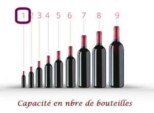 Coffret cadeau Malette pour 1 bouteille de vin simili cuir Vert Fonçé