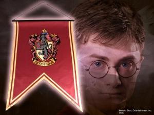 Bannière Maison Gryffindor